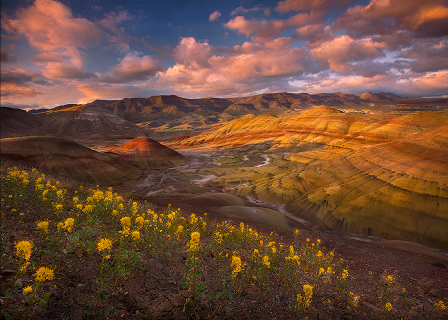 Click Here For More Info On The Painted Hills And Area Travel Attractions