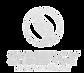 rsz_synergy_logo_edited_edited.png