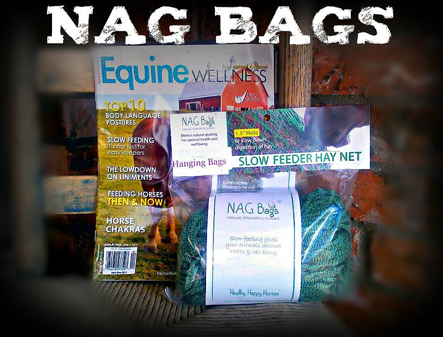 see no evil benefit barrel race nag bags