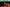 4. Zona Verde: Harrods y el lujo