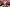 5. Zona Rosa: Covent Garden