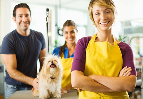 Dog Grooming Frisco Tx