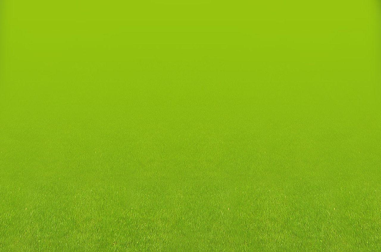 wm_grass_a02