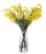 Geel bloemen.jpg