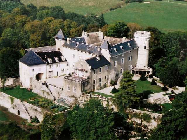 Chateaux a vendre buy castle france buy manor france for Acheter maison france voisine geneve