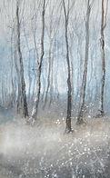 birchwood winter 1.jpg