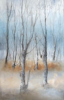 birchwood winter 2.jpg