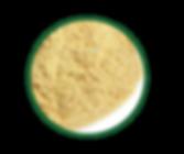Lactobacillus-fermentum-K9-2-768x644.png
