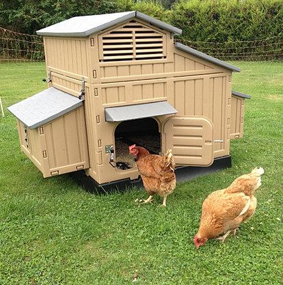 poulailler 2 poules pas cheres poulailler. Black Bedroom Furniture Sets. Home Design Ideas