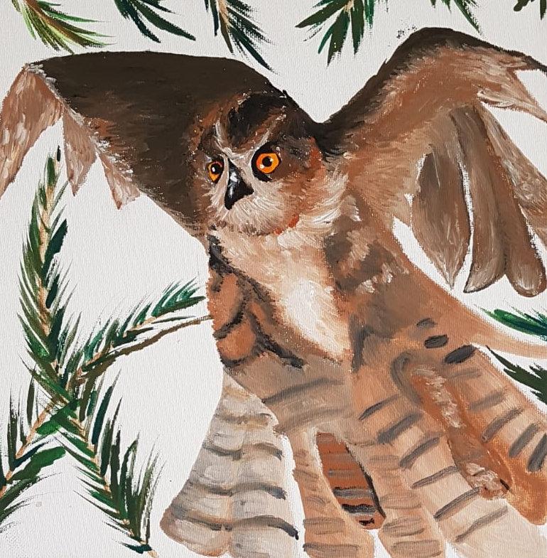 'Owl' by Robert Cook.jpg
