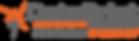 Logo-DataPrint.png