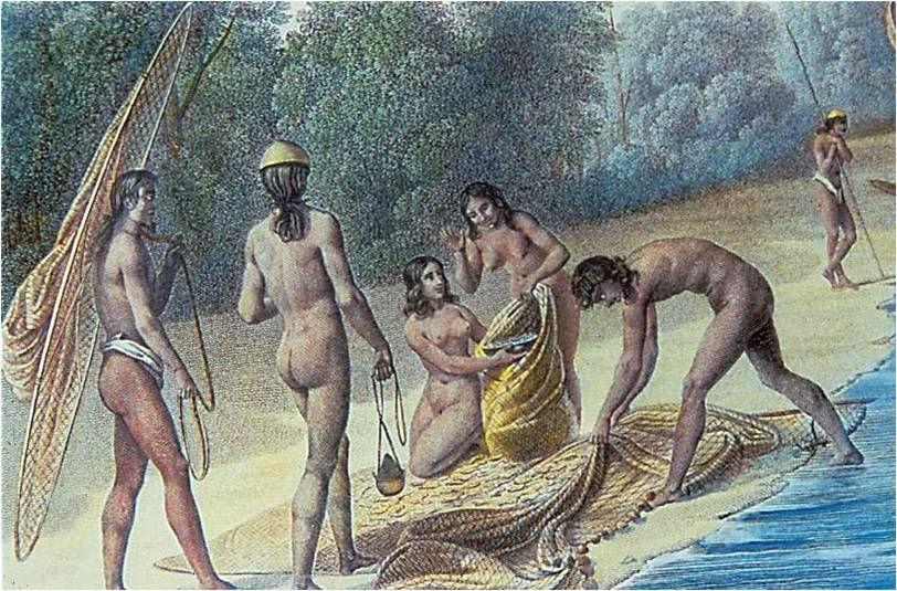 Chamorro's complex society