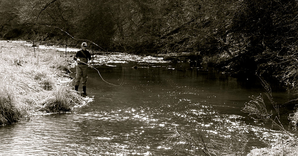 Driftless on the fly for Driftless fly fishing