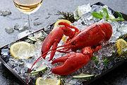 fresh-lobster-ice-lemon-glass-wine-51868
