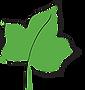 Santa Verde Logo Icon.png