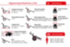 Hippocampe Marathon Datos-1.png