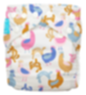 Behrendt Graphic Design diaper design rooster and hens for Charlie Banana