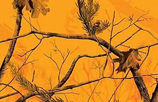 AP Blaze Camouflage Realtree