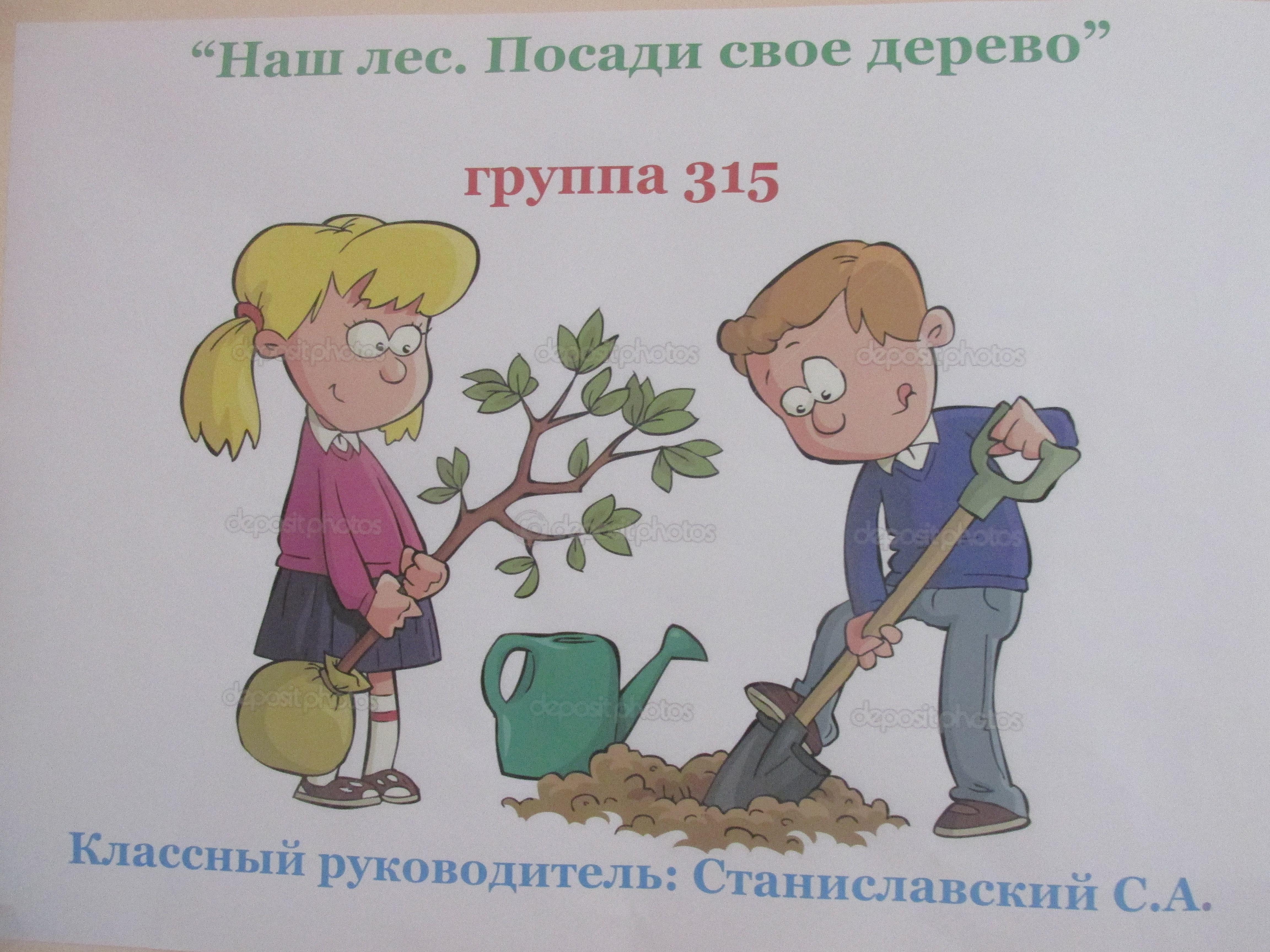 Наш лес посади свое дерево картинки 3