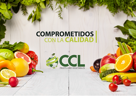 cartel ccl stand ccl-01-01.png