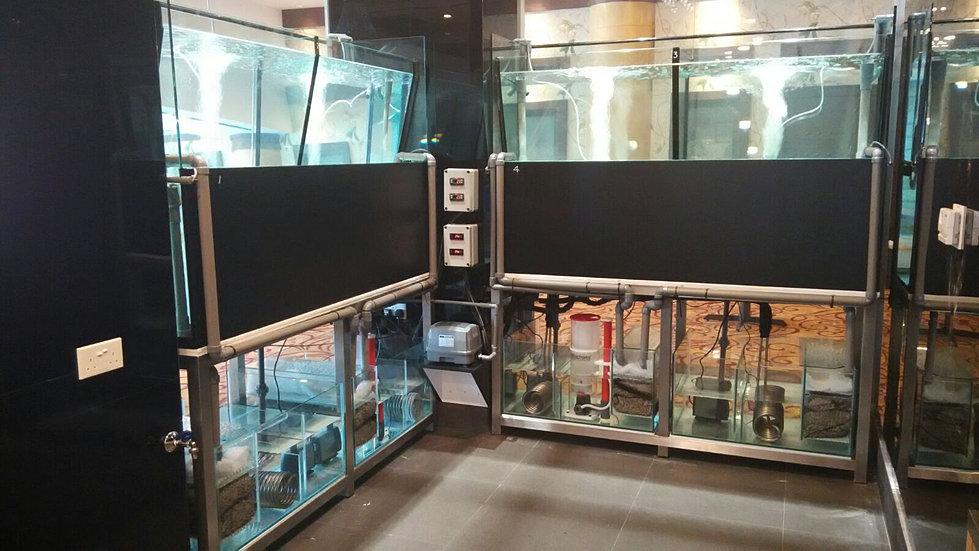 how to build a custom fish tank