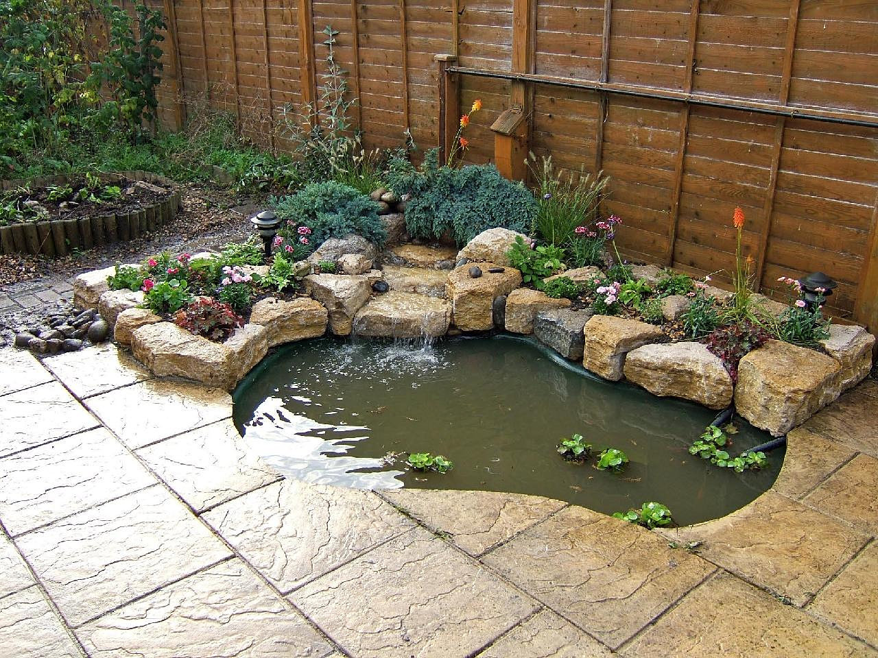 All About Fish Aquarium Pond Maintenance Cleaning