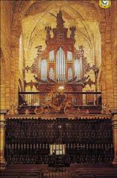 organo Santillana.jpeg