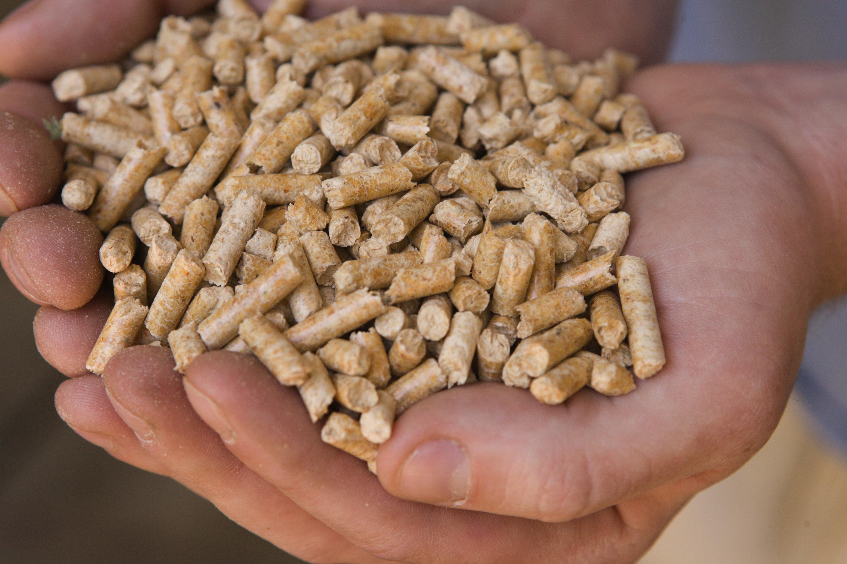 wood pellets and bio fuel. Black Bedroom Furniture Sets. Home Design Ideas