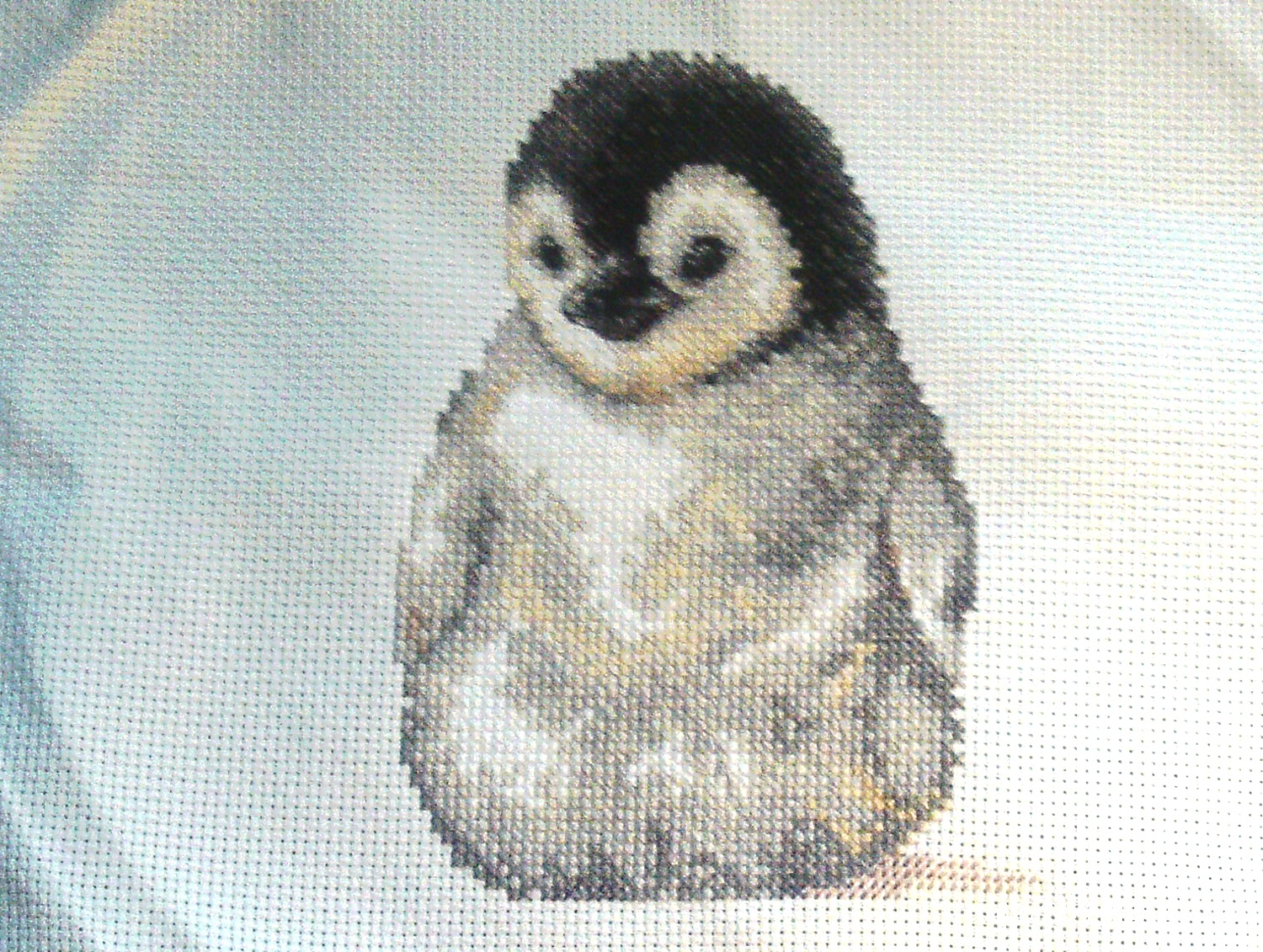 Little Penguin Cross stitch kit