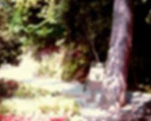 HISSORI-SAN 2010 © mina chape