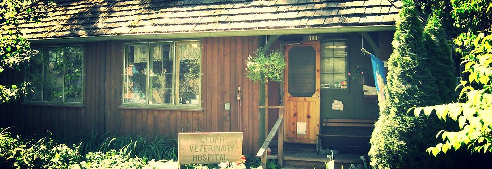 Cedar Veterinary Hospital