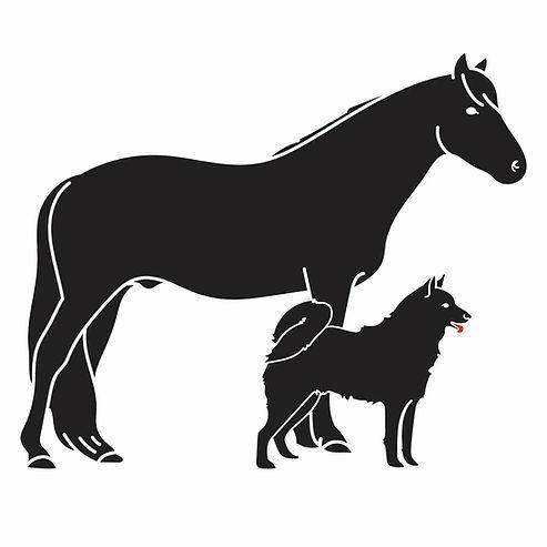 Hoitava laserlaite hevosen ja koiran laserhoitoon