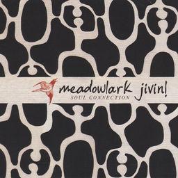 MEADOWLARK JIVIN.jpg