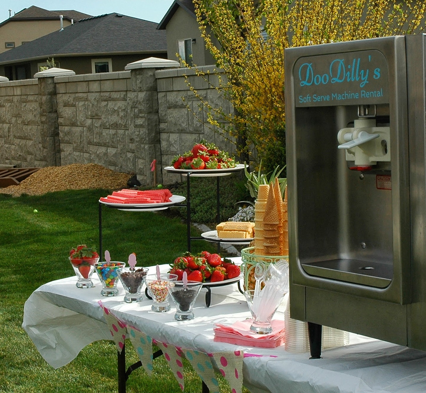 ... Soft Serve Ice Cream Machine Rental | Utah_ice_cream_machine_rental