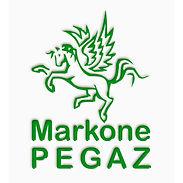 MarkonePEGAZ logo 600.jpg