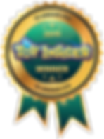 toy-insider-12under12-ribbon.png