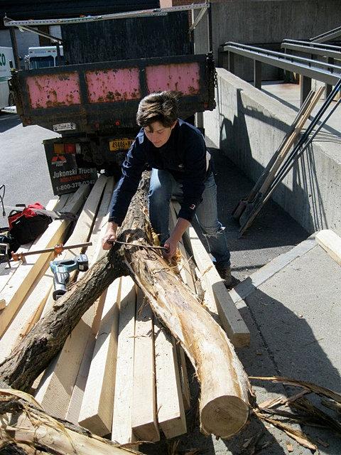 Locally-Harvested Black Locust Wood