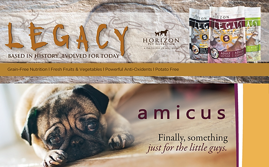 amicus & Legacy
