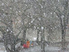 tempête_de_neige.jpg