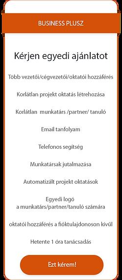 Business_egyedi_ajánlat.png