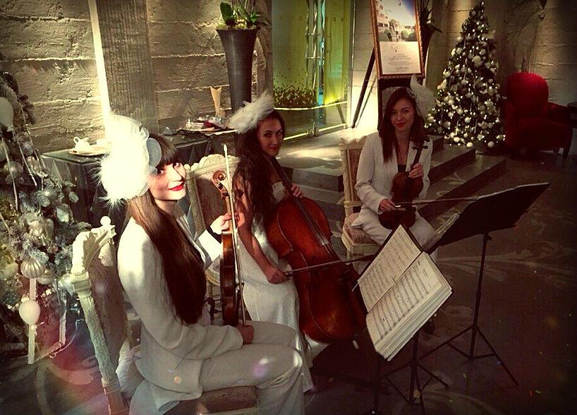 Струнное трио Violin Group DOLLS, свадьба