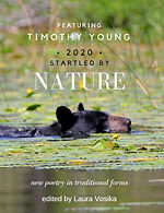 Startled by Nature Cover front only.JPG