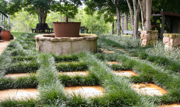 Steven clegg design for Garden designs brisbane