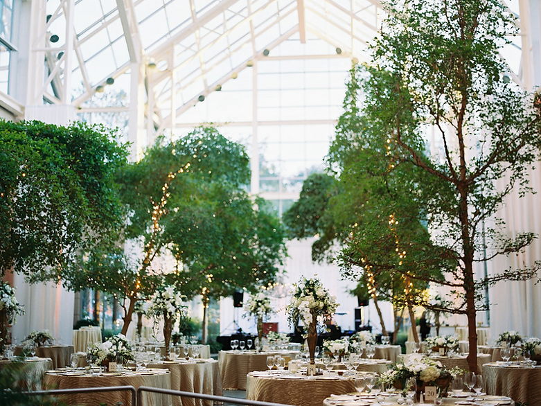 Wedding & Event Venue - Downtown Rochester, The Wintergarden
