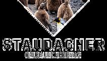 logo-354x200.png