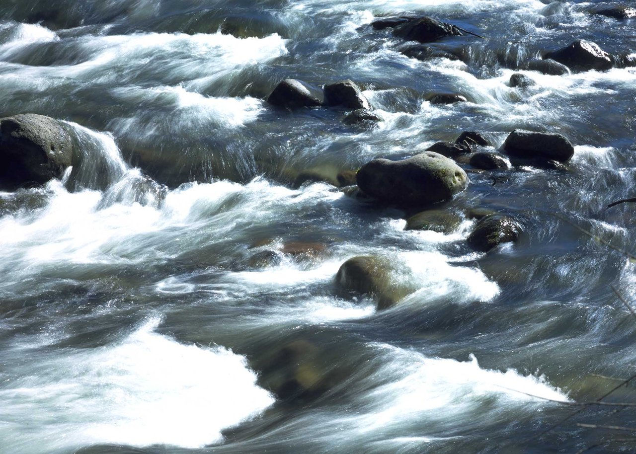 Rapids OR
