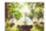 corporate health meditation yoga willow tree center