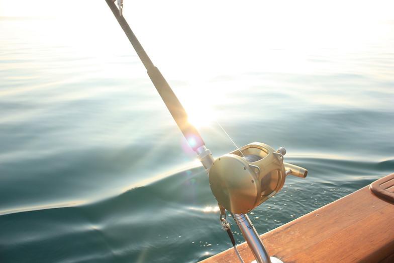 Newfoundland tuna fishing charters for Tuna fishing pole