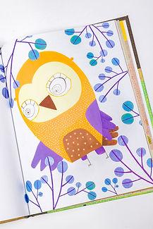 owl book 5.jpg