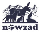 NOWZAD_logo.png